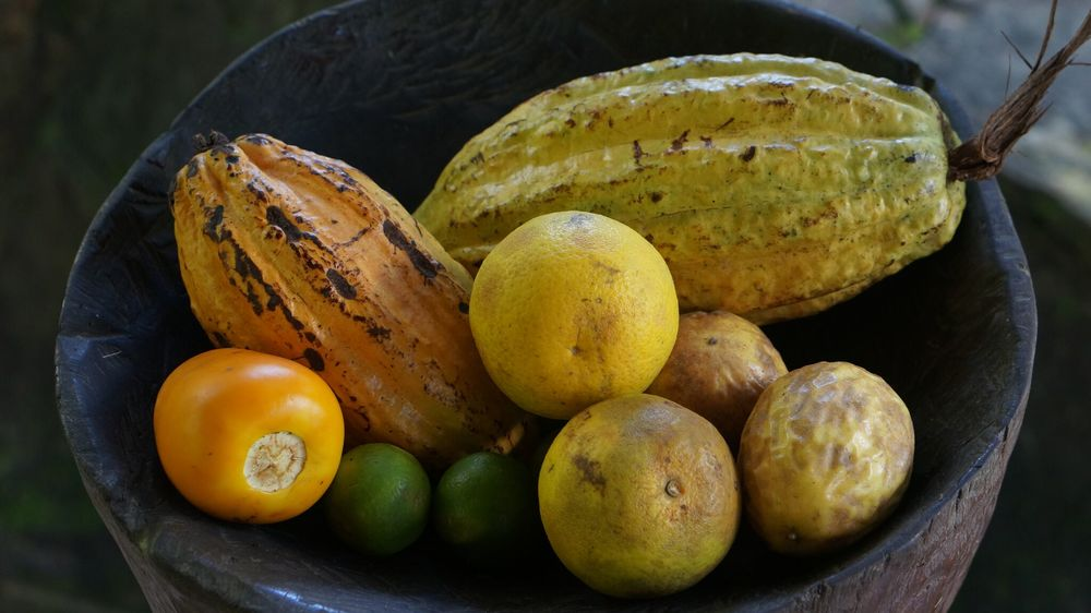 Peruvian Jungle Fruits