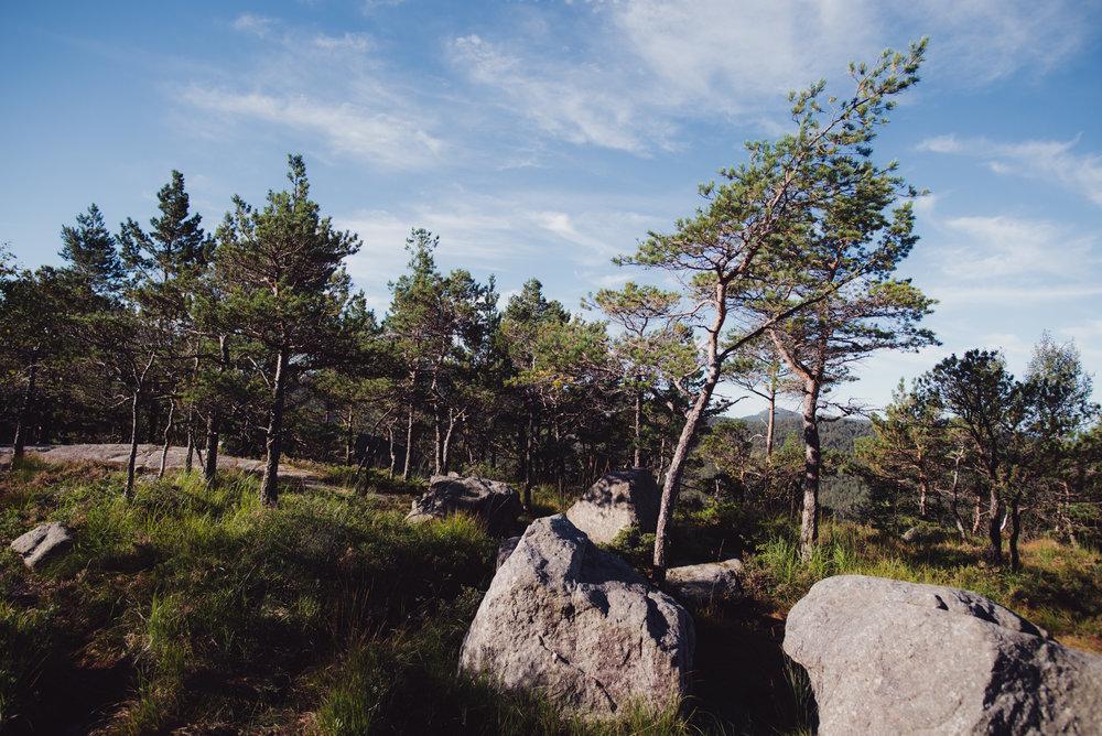 Norwegen-178.jpg
