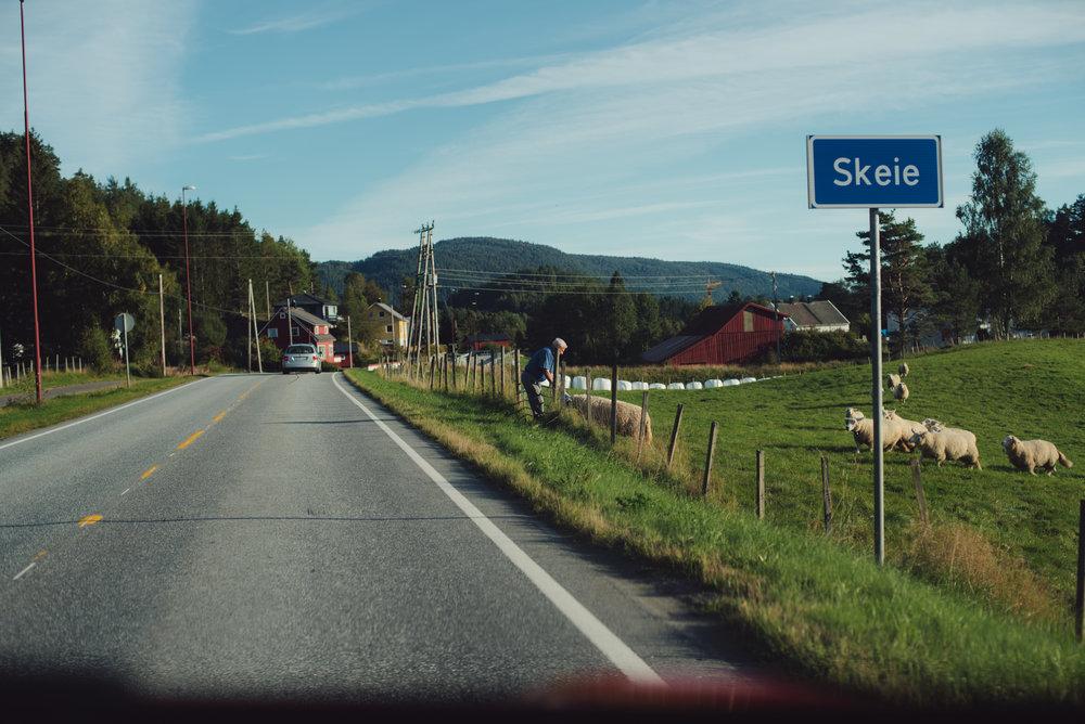 Norwegen-234.jpg