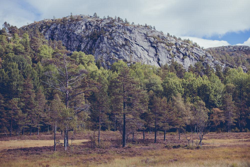 Norwegen-274.jpg