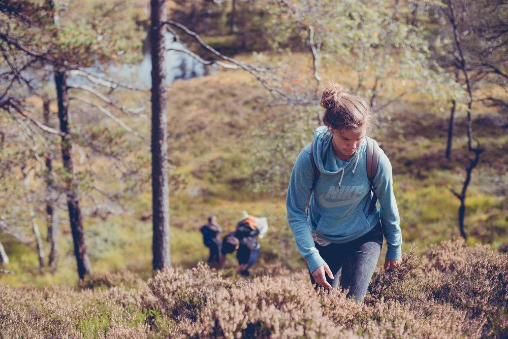 Norwegen-278.jpg
