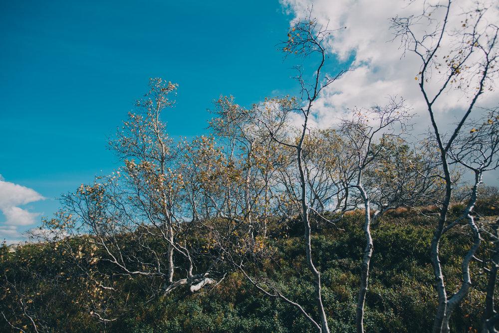 Norwegen-466.jpg