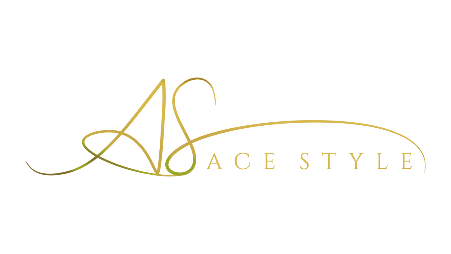 Ace Style