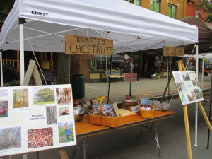 Roasted chestnuts for sale on the streets of Ithaca, NY