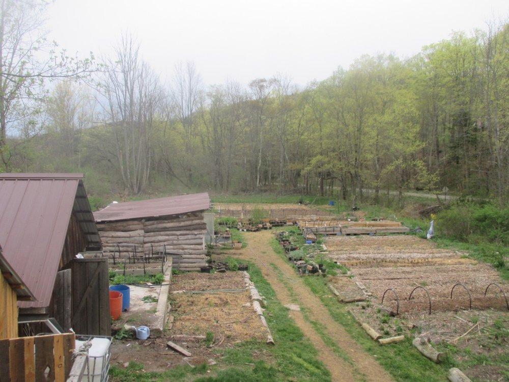 b0a7518b8a Starting a Nursery Business — Twisted Tree Farm