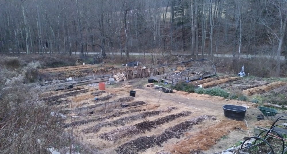 Nursery Beds at Twisted Tree Farm