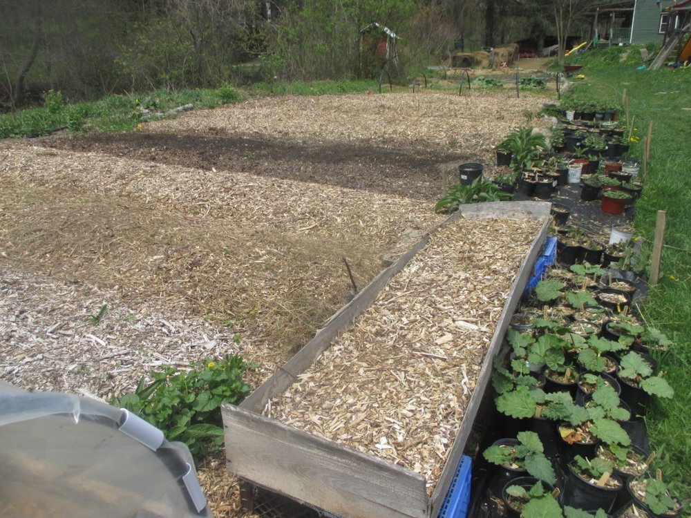 Mulched, cared for beds will reward you for the work you put into them.