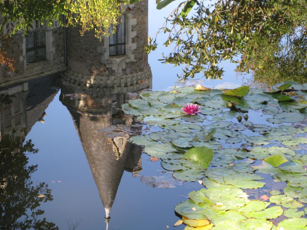 tower reflection.jpg