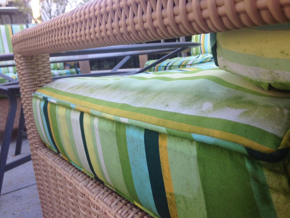 Moldy outdoor furniture