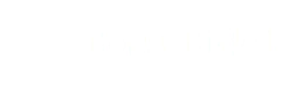 Boss Bidet | Bidet Toilet Attachment
