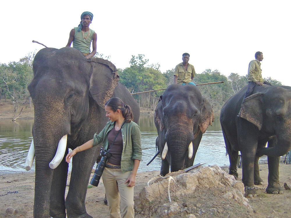 Elephant-and-Mahouts.jpg