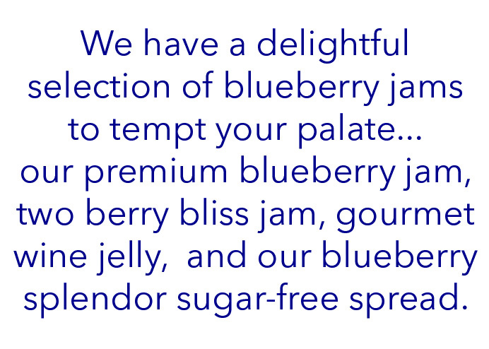 blueberry jams content.jpg