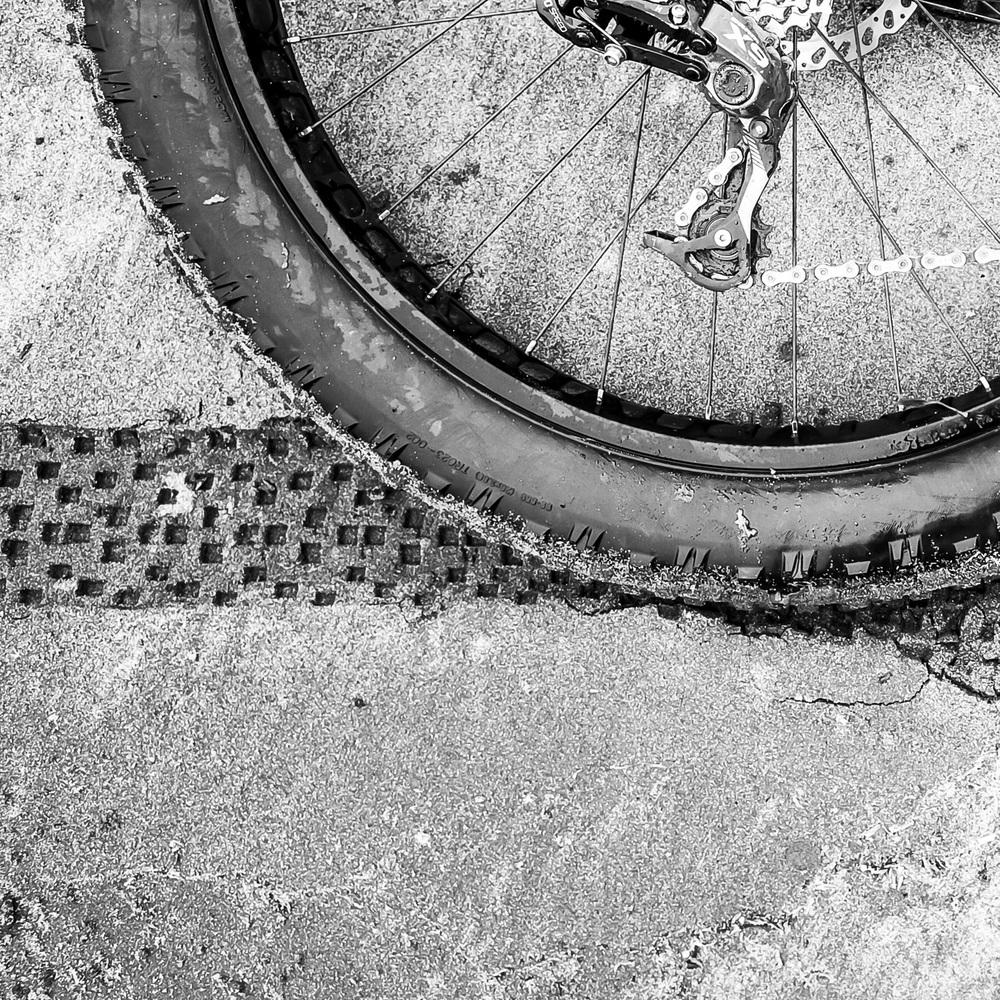 Fat Bike - _2.jpg
