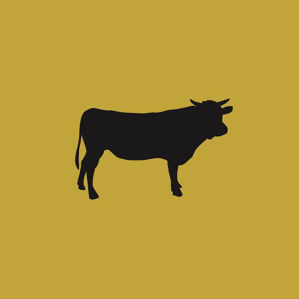 erw cow.jpg