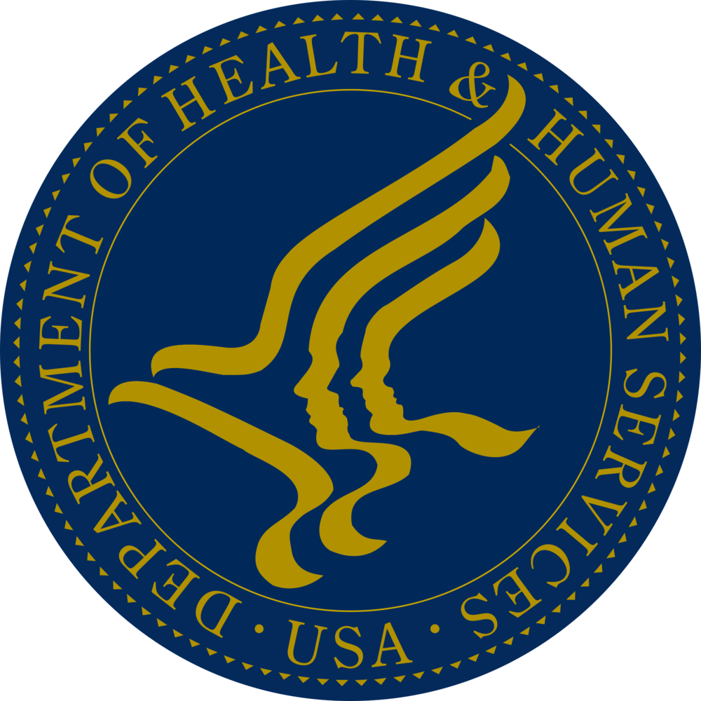 Lutheran-Services-of-Georgia-DHS-Logo