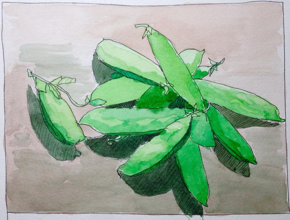 """Pea Season"" Art journal, watercolour and ink"