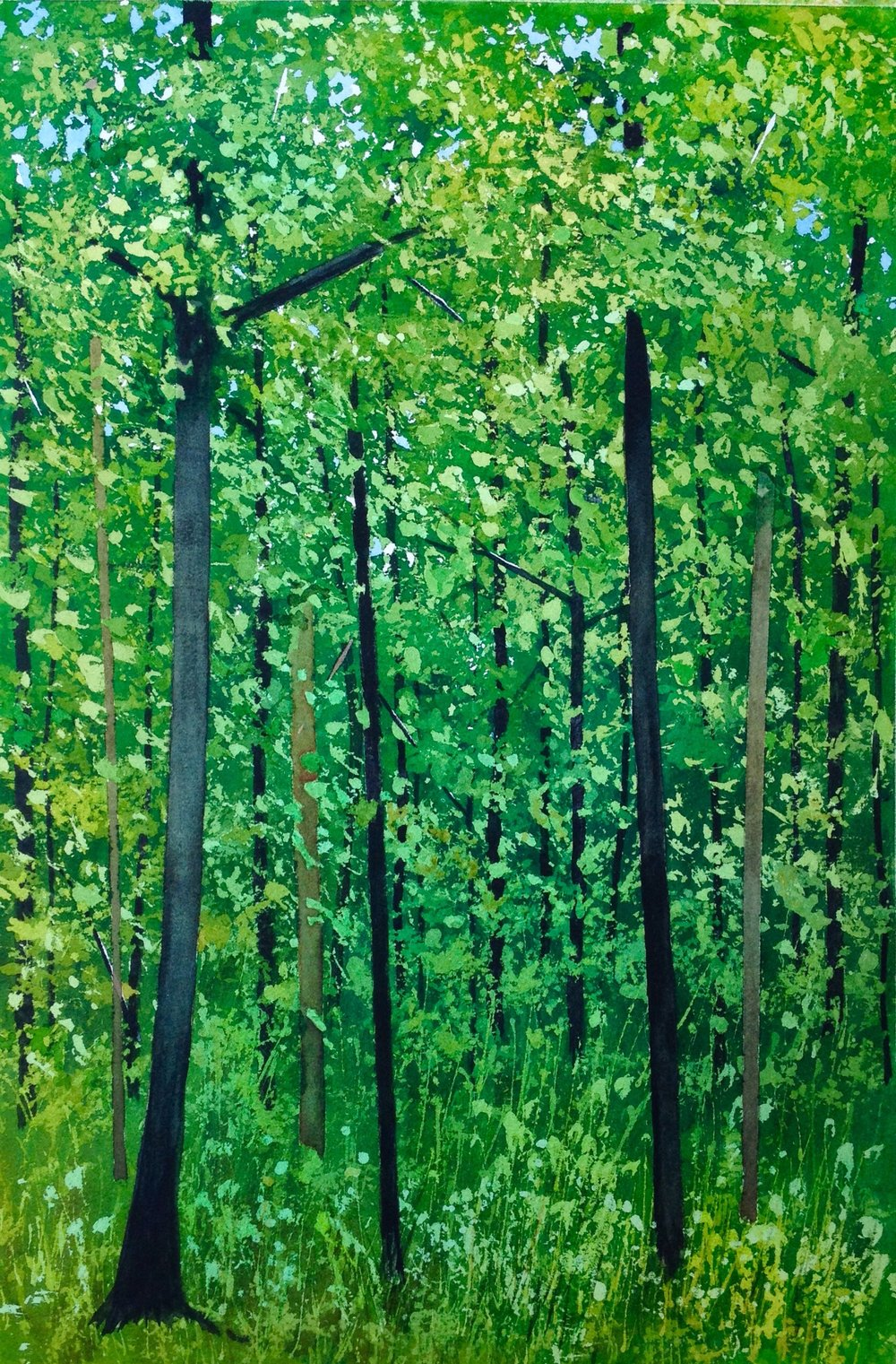 """Midsummer Woods"". Watercolour, 21 x 14"""