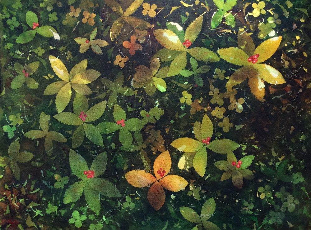 Forest Floor II