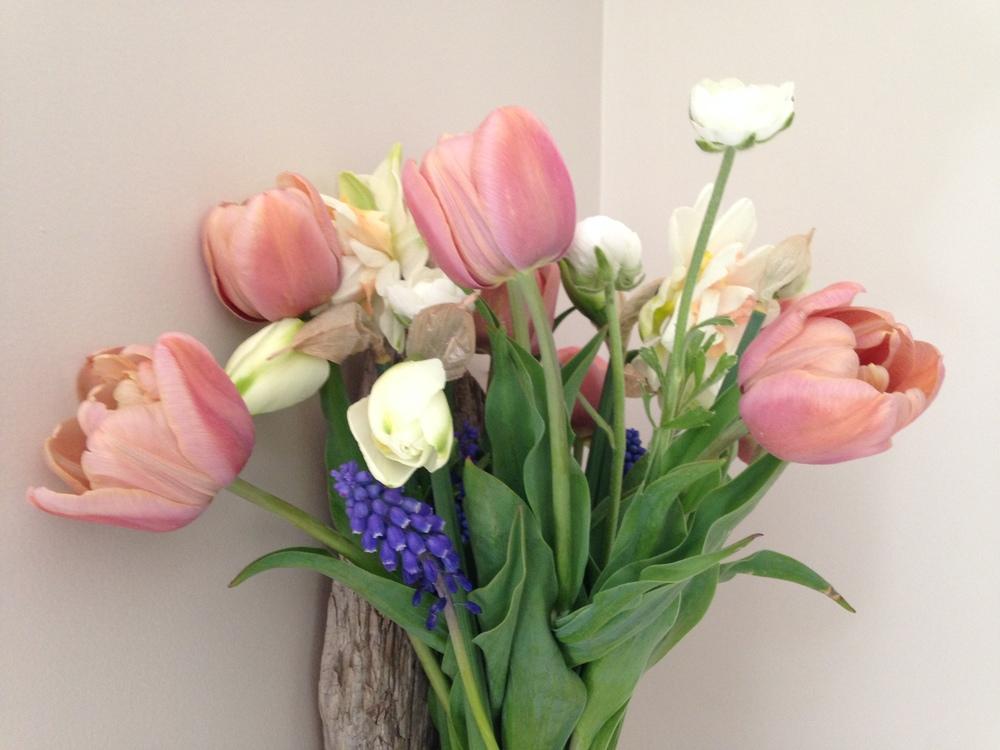 flower share spring.JPG