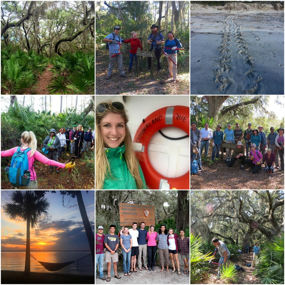 Cumberland Island Service Weekend. Photo by Phuc Dao