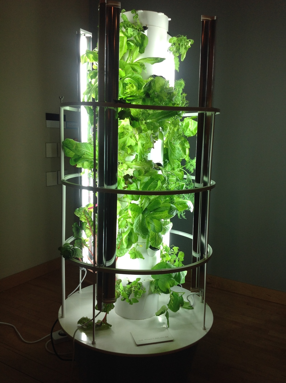 Tower Garden, A Vertical, Aeroponic Growing System, Allows You To Grow Up  To 20 Vegetables, Herbs, Fruits And Flowers In Less Than Three Square  Feetu2014indoors ...