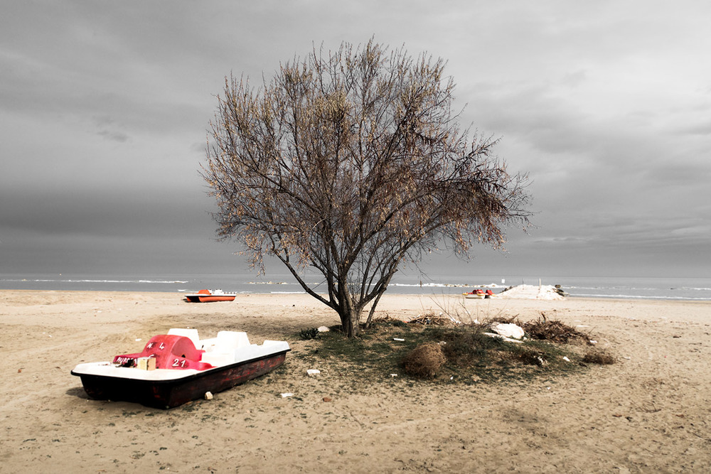 TREE - Pescara
