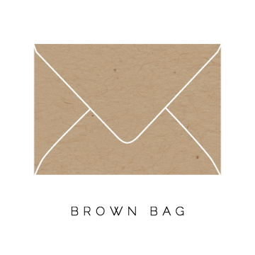 Brown-Bag-Envelope.jpg