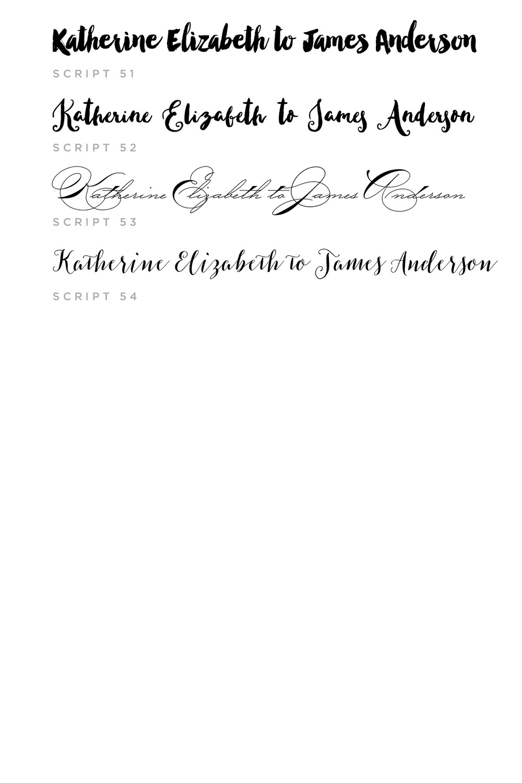 Script Fonts6-01.jpg