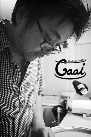 Gaai Plus Logo.png
