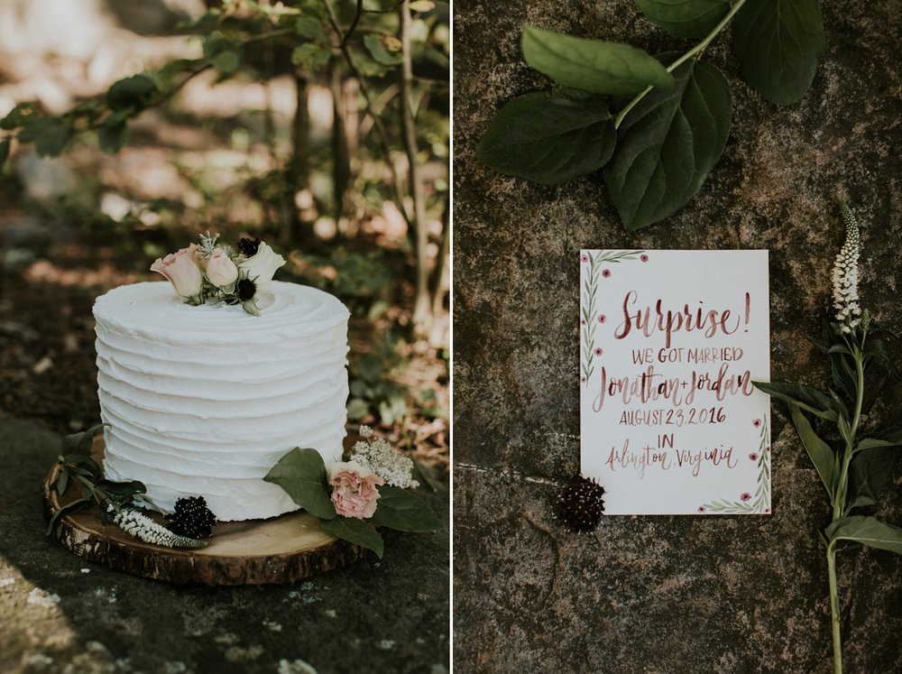 washington-dc-bluemont-wedding-photographer 1.jpg