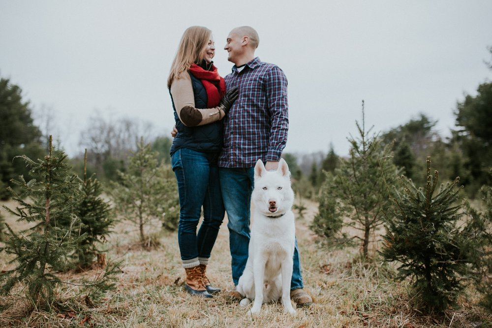 washington-dc-christmas-tree-farm-engagement-photographer 2.jpg