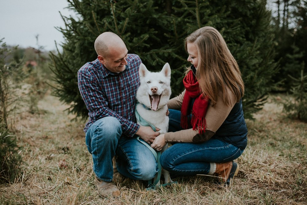 washington-dc-christmas-tree-farm-engagement-photographer 4.jpg
