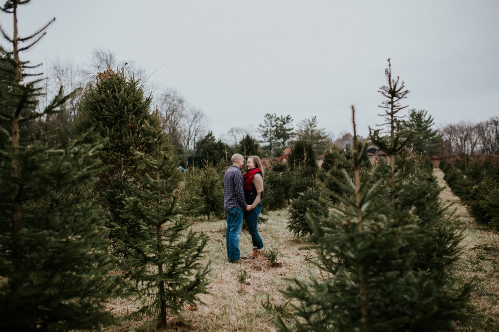 washington-dc-christmas-tree-farm-engagement-photographer 12.jpg