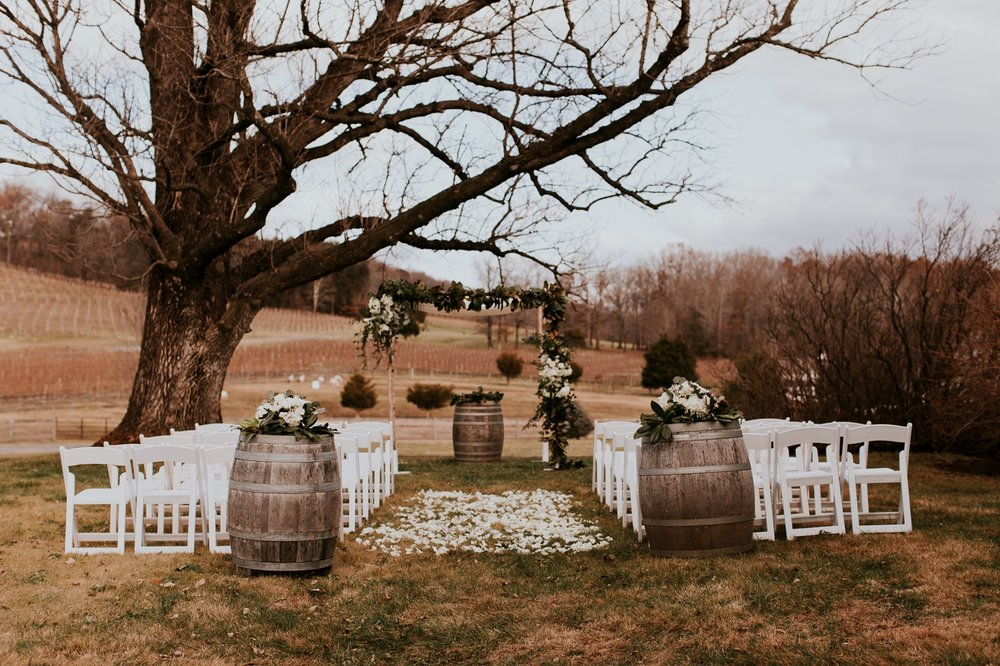 veritas-vineyard-virginia-outdoor-wedding-photography 34.jpg