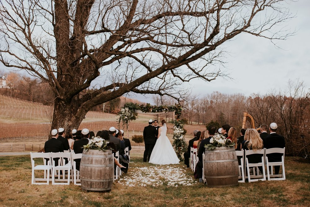 veritas-vineyard-virginia-outdoor-wedding-photography 36.jpg