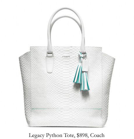 legacy-python-coach.jpg
