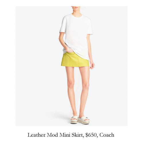 leather-mod-skirt-coach.jpg