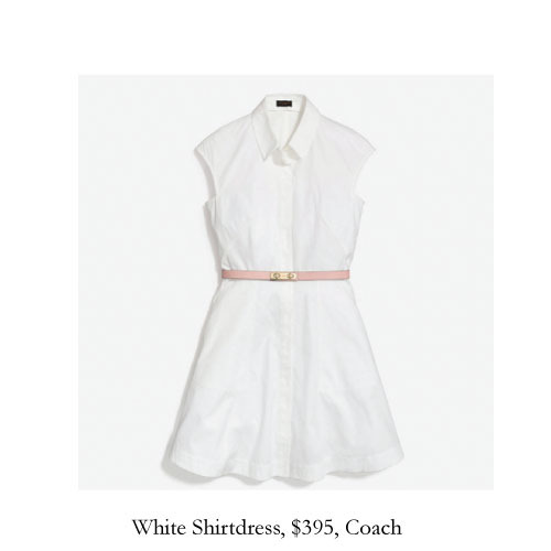 white-shirtdress-coach.jpg