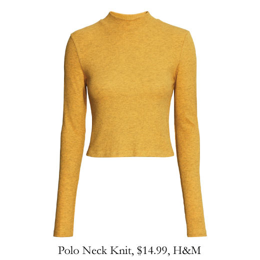 polo-neck-knit-hm.jpg