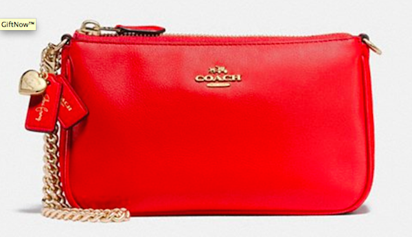selena-wristlet-mixed-leathers-150-coach.png