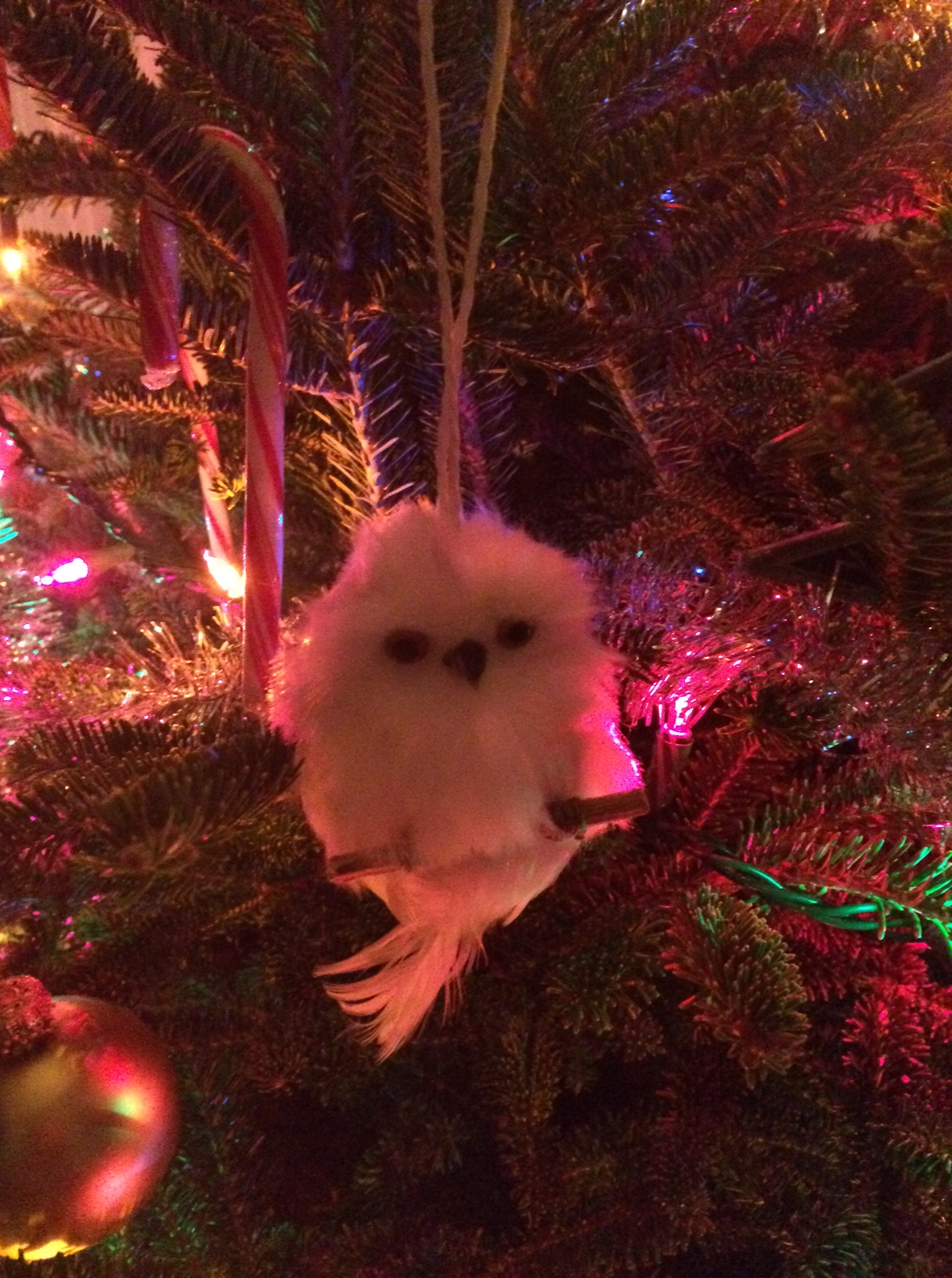 """In the spirit of the holiday, here's a picture of Hoover, my favorite Christmas ornament from our tree. (I purposely left out the """"whole tree"""" pic. I like to keep it tasteful around here. ;))"""