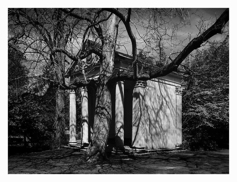 Sydney Gardens 1.