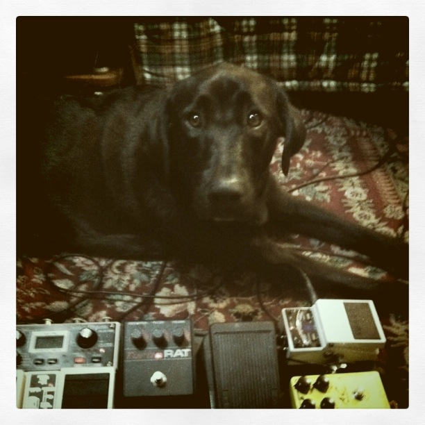 Recording with Stellar Ego - NYC guitarist Cameron Mizell