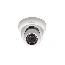 Indoor/Outdoor Dome Camera