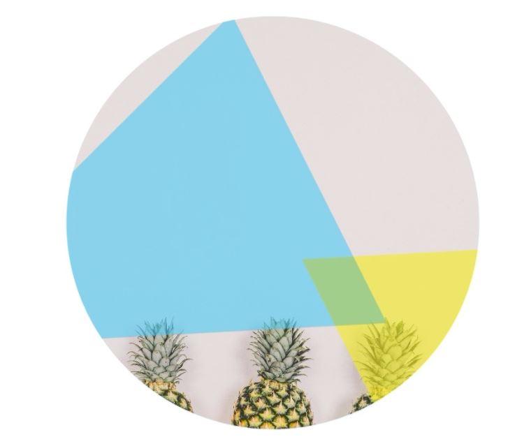 chew logo.JPG