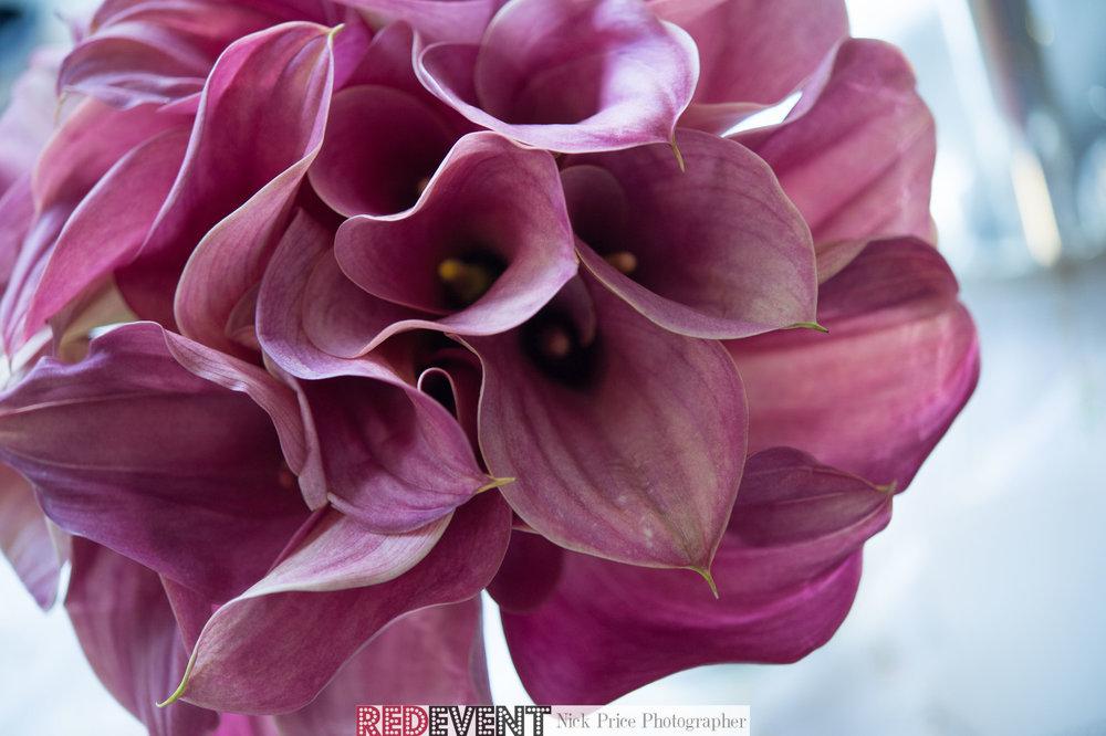 Carol Annes Florist untitled-80.jpg