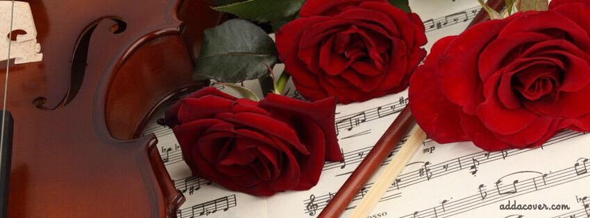 serenata String quartet special offer for Formby Hall Wedding Fayre Liverpool Wedding Fair Merseyside Weddings www.redeventweddingfayres.com.jpg