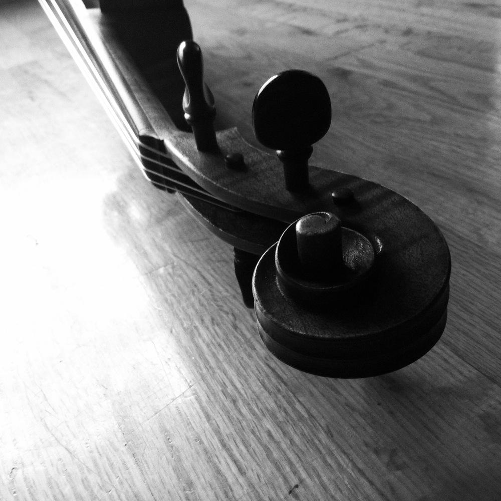 Viola scroll on hardwood floor