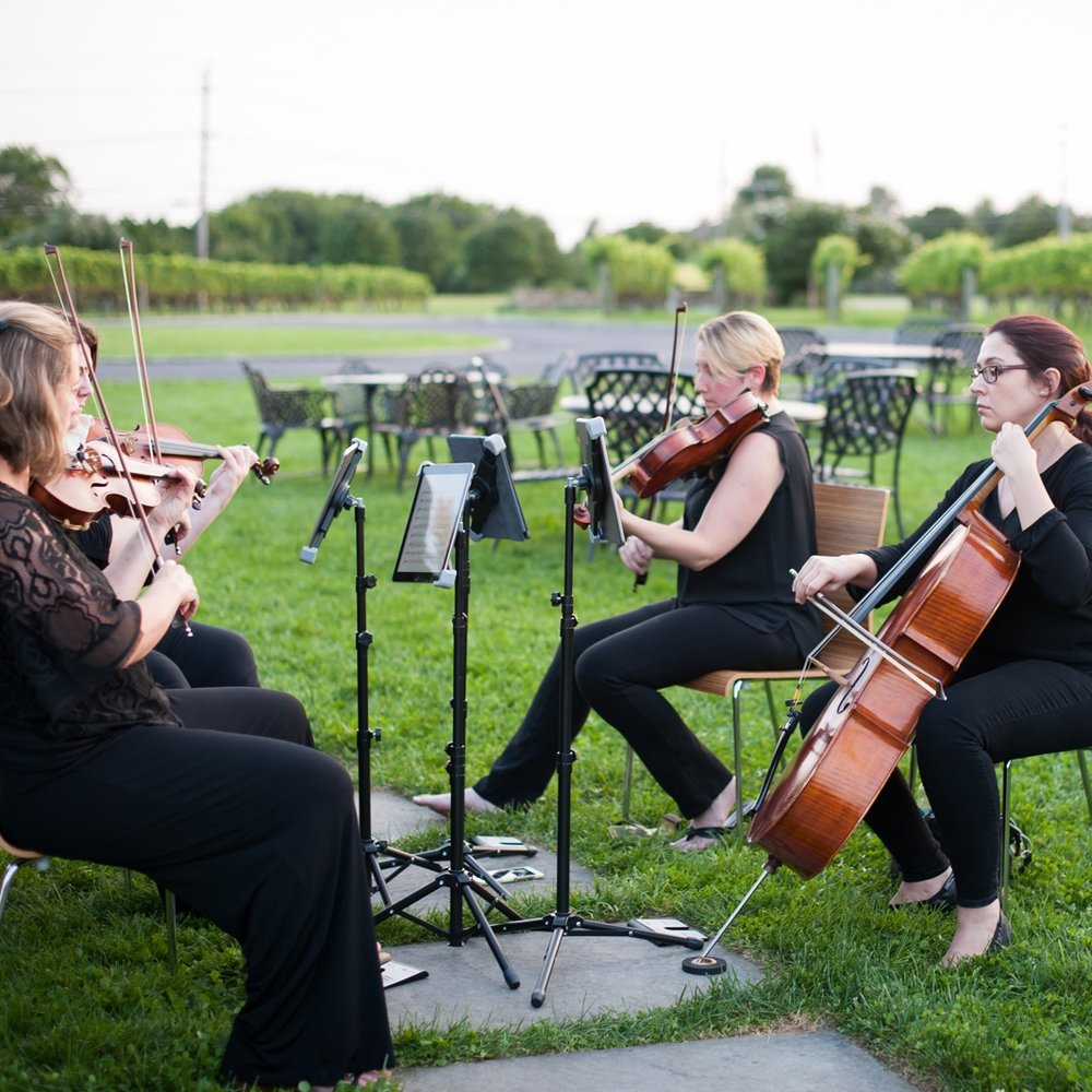 Classical Quartet - Have a professional string quartet perform for your wedding ceremony and/or cocktail hour. This ensemble is comprised of 2 violins, one viola and one cello. This quartet performs classical music only. See our classical quartet repertoire list.