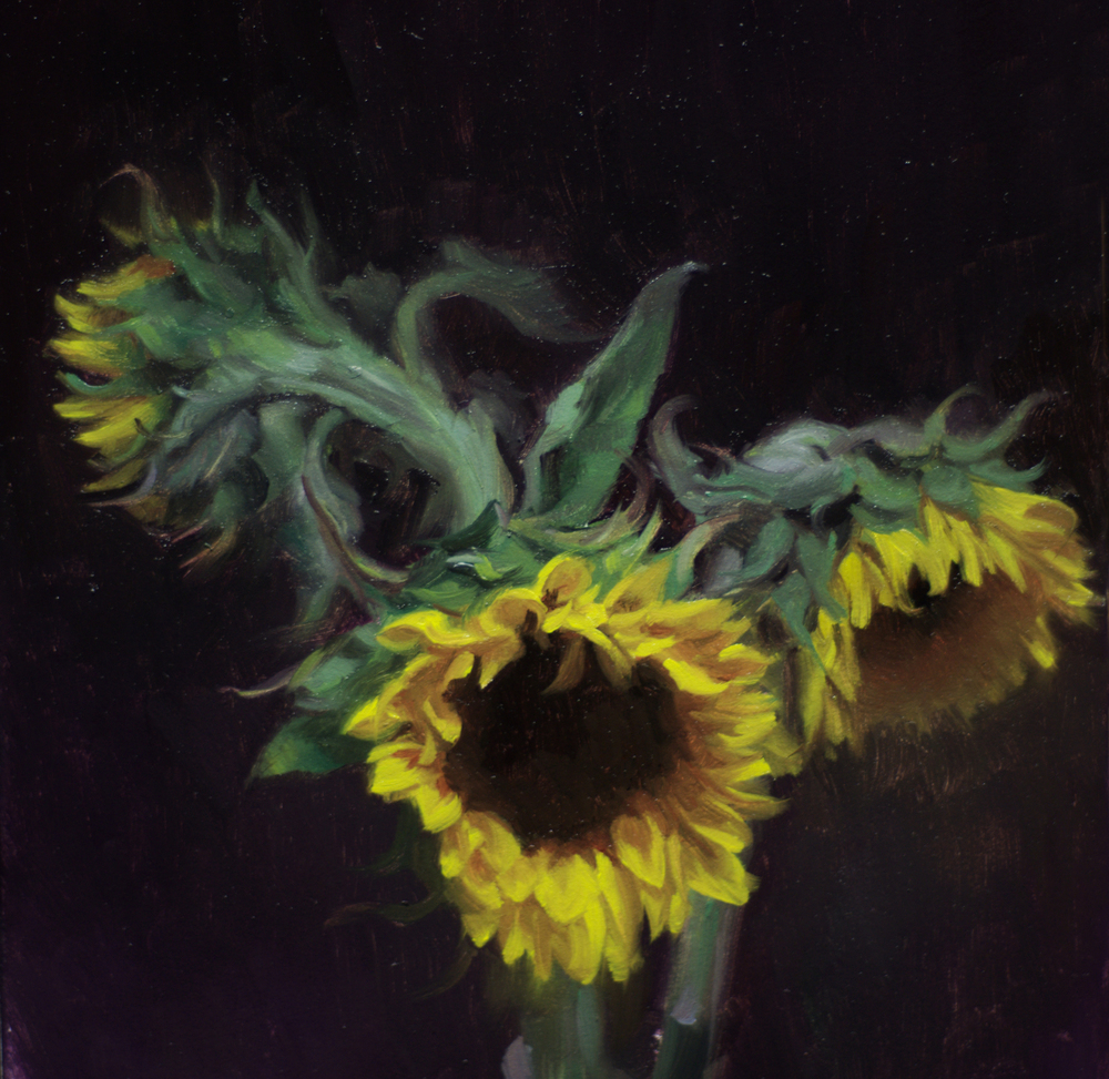 3sunflowers.jpg